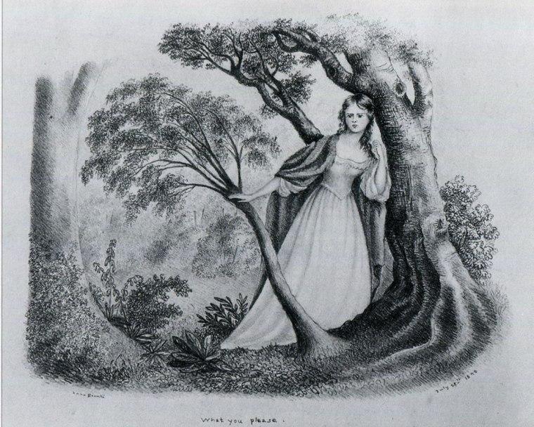 Anne Brontë, 1840, What you please